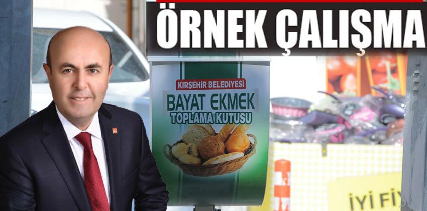 Kırşehir Belediye Başkanı sayın Selahattin EKİCİOGLU, sokak hayvanları için çalışma başlattı!!